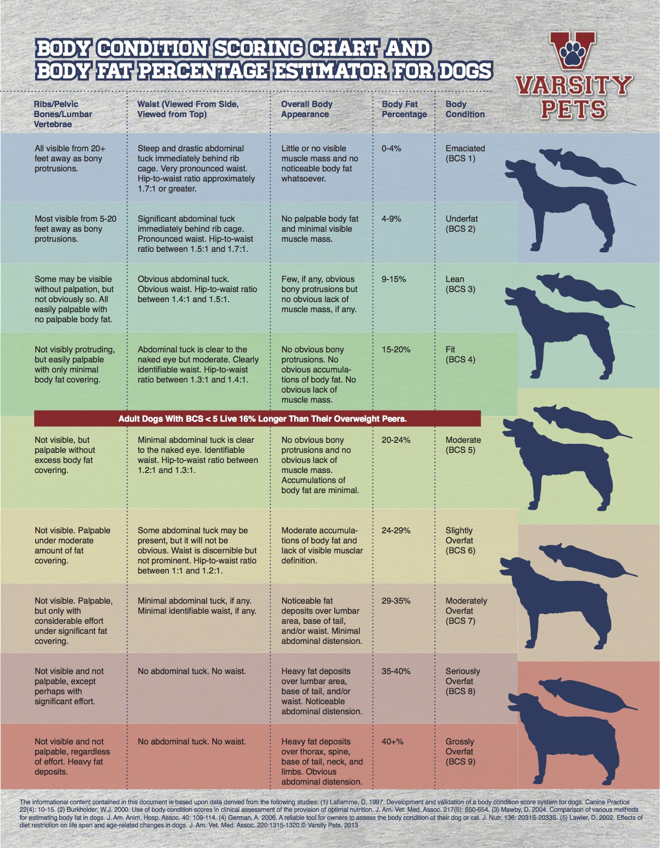 Body Condition Scoring Chart For Dogs copy