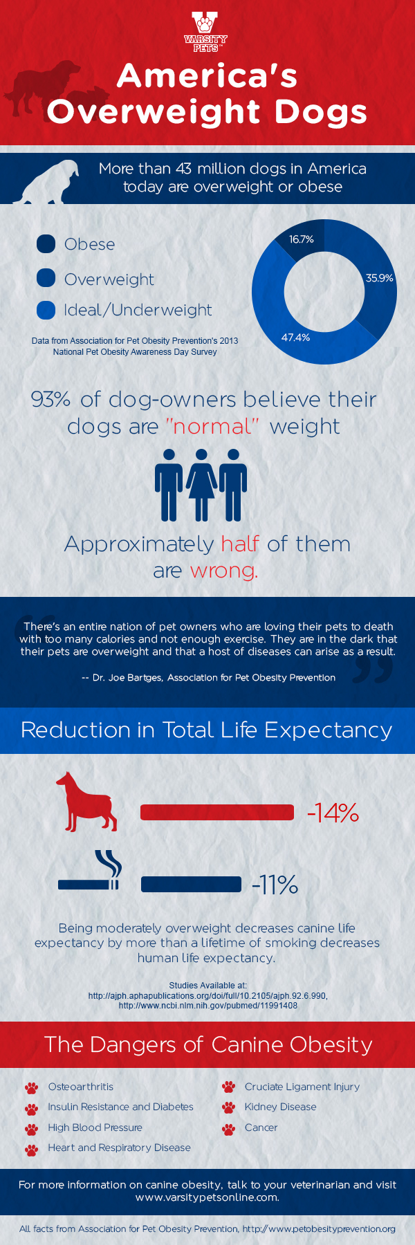 An infographic about the dangers of canine obesity.